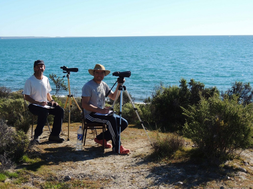 Right Whale Researchers at Peninsula Valdes